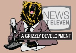 design-grizzly