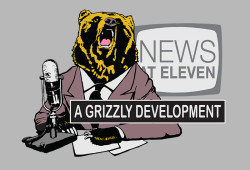 design-800-Grizzly